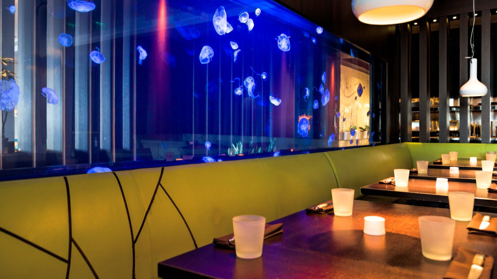 W Fort Lauderdale - Steak 954 Jellyfish Tank